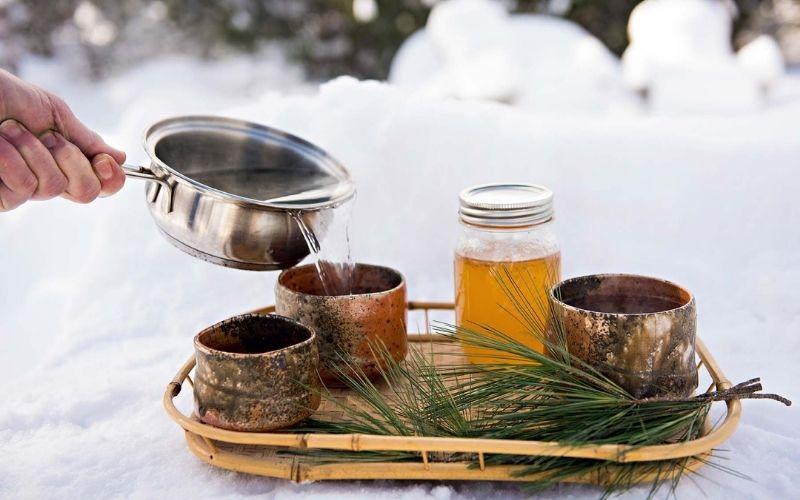 Чай из сосновых иголок